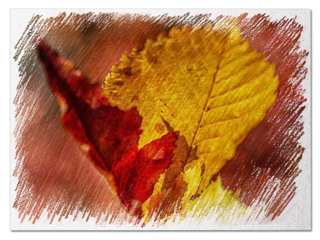 осенние листья рисунок