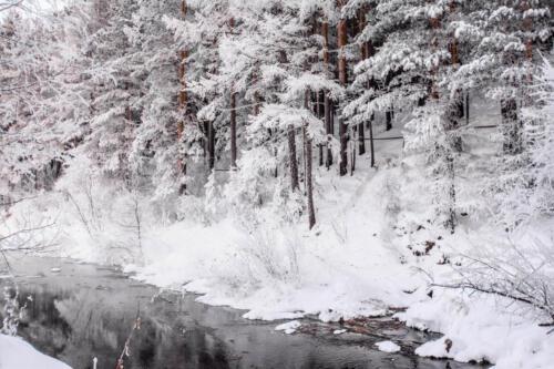 Снег зимой на реке Китой. -30 °C. Лес в зимнем наряде на берегу реки.
