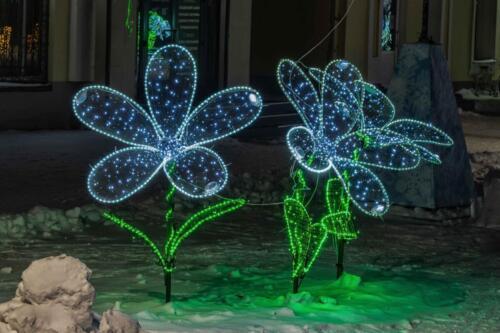 Барнаул светящиеся цветочки