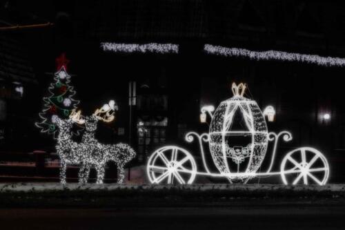 Барнаул светящаяся карета