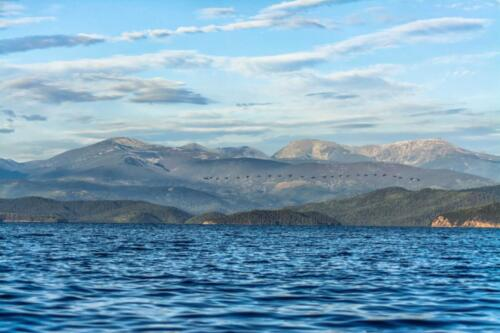 Чивыркуйский залив, Байкал. На фоне гор летит стайка бакланов