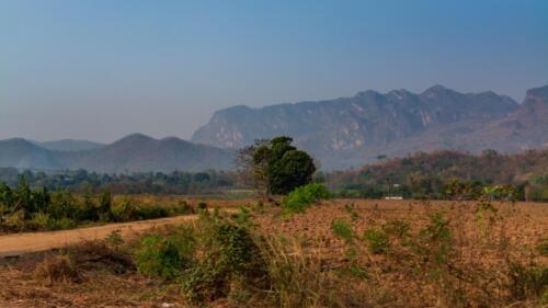 Пейзажи Таиланда, поля