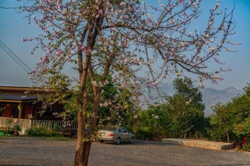 Пейзажи Таиланда