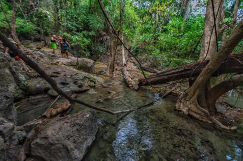 Люди переходят ручей в джунглях