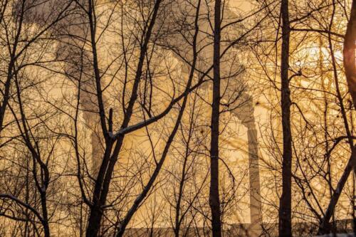 дым труб сквозь деревья