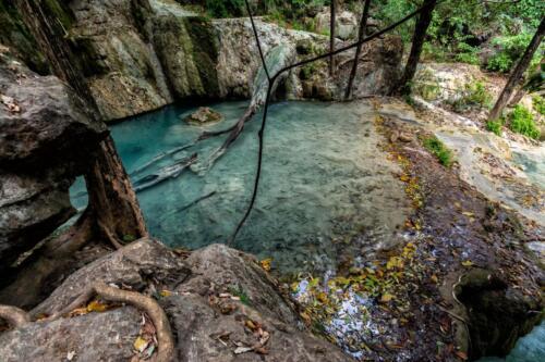 Заводь ручья в джунглях